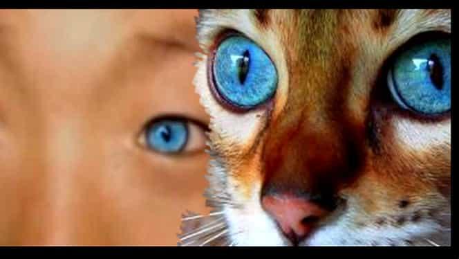 GALERIE FOTO. Copilul care pare de pe alta Planetă. Ochii lui sunt specifici unei noi rase umane