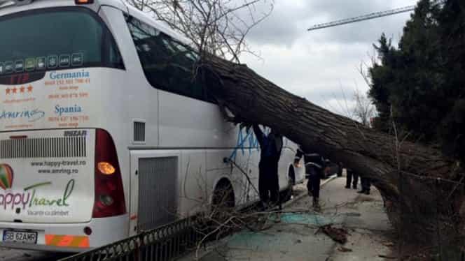 Furtuna a făcut ravagii în ţară şi în Capitală! Doi răniţi, 167 de copaci prăbuşiţi şi 81 de maşini avariate. GALERIE FOTO şi VIDEO