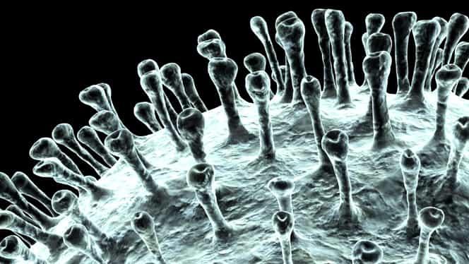 Secția de Neurologie a Spitalului Petroşani a fost închisă. O purtătoare de coronavirus a intrat în contact cu cel puțin 50 de persoane