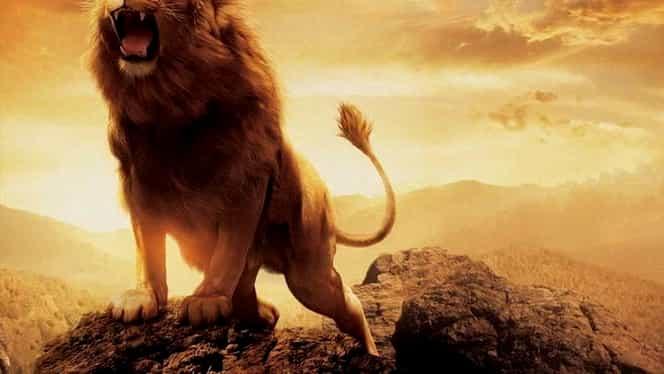 Horoscop zilnic: sâmbătă, 11 august. Leul vrea schimbare, partenerul de viață în alertă