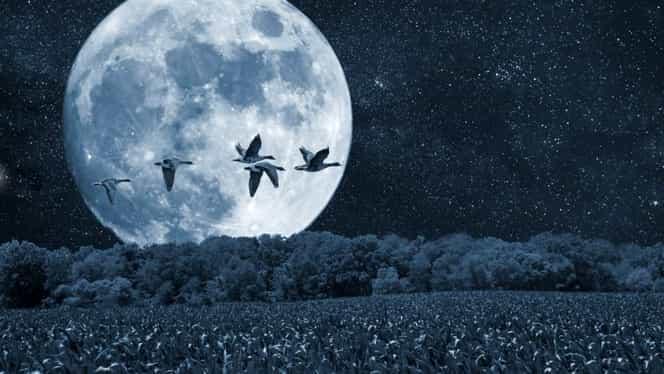 Cum ne afectează Luna Plină de pe 14 octombrie. Fenomenul care influenţează decizii majore