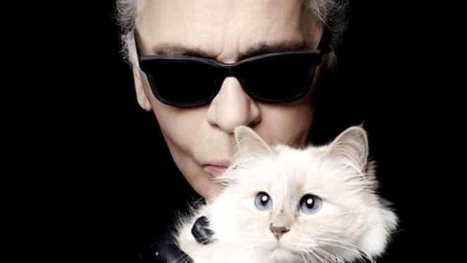 Ce a apărut pe contul lui Choupette, pisica lui Karl Lagerfeld, după moartea designerului. FOTO