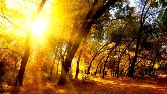 Prognoza meteo 24 noiembrie. Temperaturile cresc în toată ţara!
