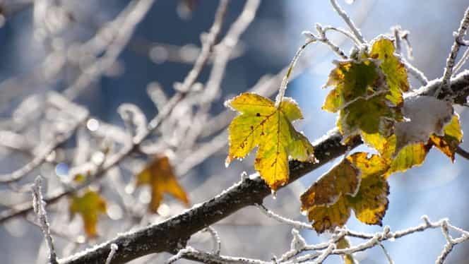 Prognoza meteo duminică 25 noiembrie: vremea se încălzește brusc