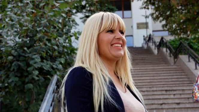 Averea fabuloasă a Elenei Udrea! Ce a lăsat fostul ministru în România