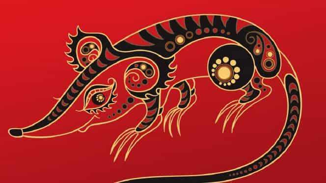 Zodiac chinezesc pentru miercuri, 11 decembrie 2019. Șobolanii află un adevăr dureros