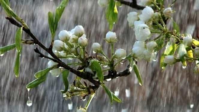 Prognoza meteo 28 martie. Vremea se încălzeşte dar va mai ploua