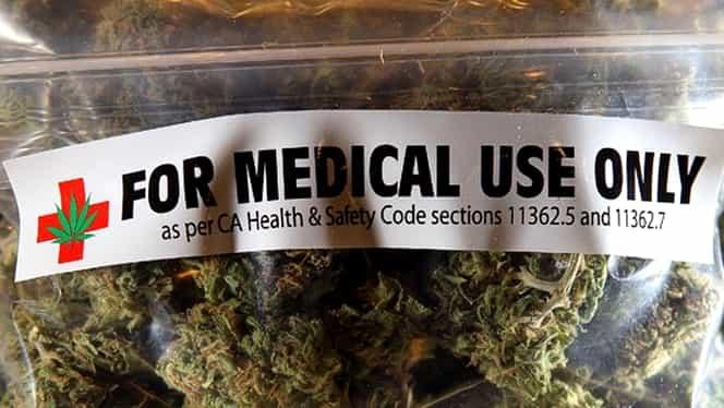 O companie din SUA vrea să cultive cannabis medicinal în România!