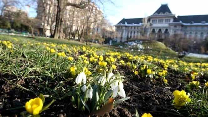 ANM a modificat prognoza meteo pentru București și alte 2 județe. Cum va fi vremea în zilele următoare