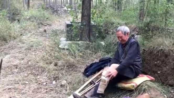 Emoționant! Un bătrân de 70 de ani, fără picioare, a plantat mii de pomi! Răvășitor