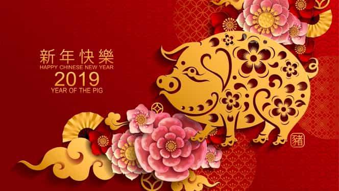 Zodiac chinezesc 2019: Aceste zodii trebuie să își investească banii