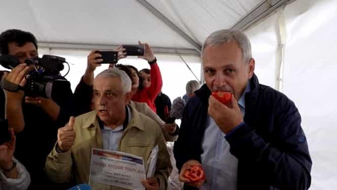 """Jumătate din """"tomatele lui Dragnea"""" prezintă urme de pesticide. Fostul lider PSD se lăuda că roșiile românești nu conțin """"chimicale"""""""