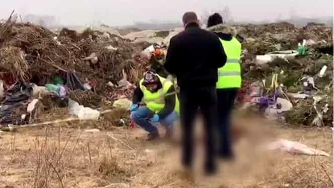 Bucăți de cadavre umane, printre gunoaiele de la periferia Timișoarei. Oamenii legii sunt în alertă maximă