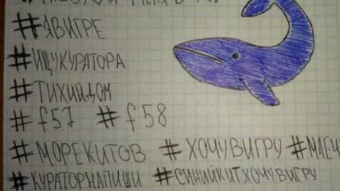 Sinuciderile nu au legătură cu jocul Balena Albastră! DIICOT a clasat toate dosarele