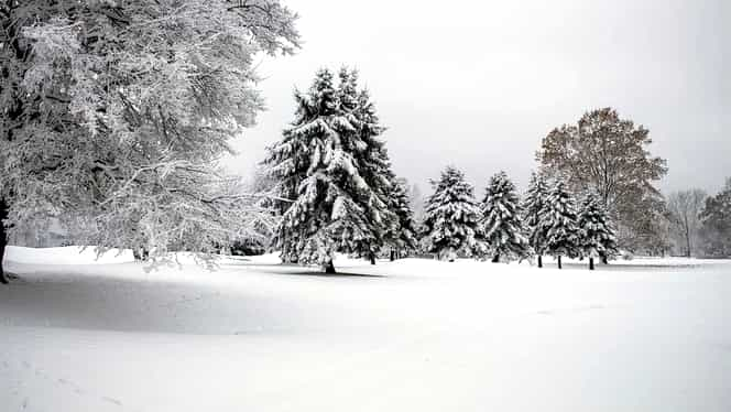 Prognoza meteo: duminică, 29 decembrie 2019. Cum va fi vremea în București, Brașov, Constanța, Cluj-Napoca și Iași. Ninsoarea va continua să cadă