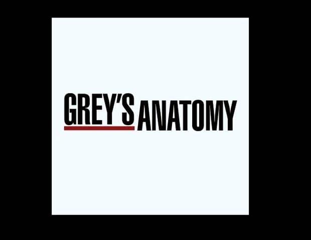 Veste excelentă pentru fanii Anatomiei lui Grey. Celebrul serial TV va mai avea cel puțin două sezoane!