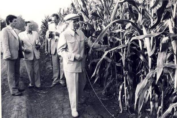 Secretele Vilei 10 Snagov! Nicolae și Elena Ceaușescu aveau trei parcele cu porumb, bananieri și 14 stupi