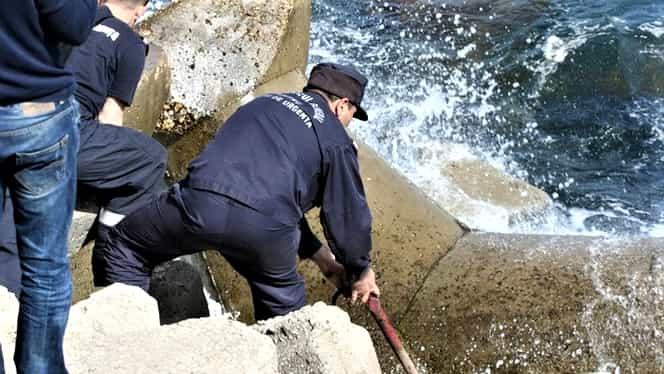 """Tragedie pe plaja """"Trei papuci"""" din Constanța. Femeie, găsită moartă între stabilopozi"""