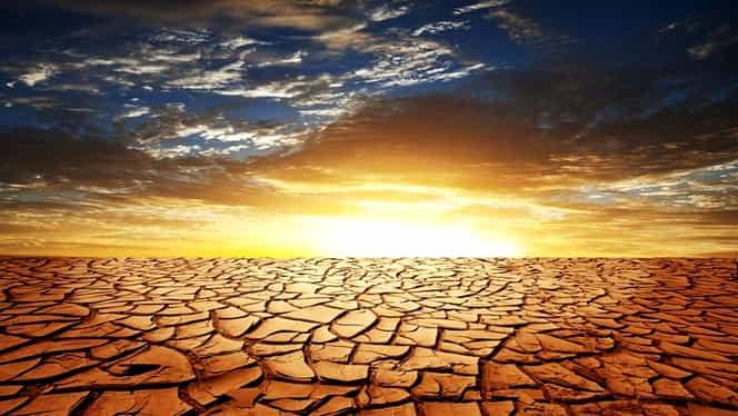 """11.000 de cercetători anunță că vom trece printr-o """"suferință de nedescris"""" în următorii ani din cauza schimbării climatice"""