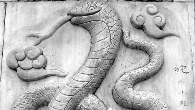 Zodiac Chinezesc pentru vineri, 24 aprilie. Șarpele e pe cale să ia o decizie greșită