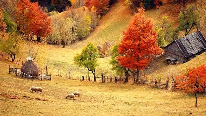 Prognoza meteo 14 noiembrie. Temperaturile se menţin ridicate în toată ţara