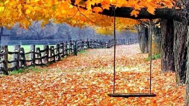 Prognoza meteo 27 decembrie. Vremea se menţine foarte călduroasă!