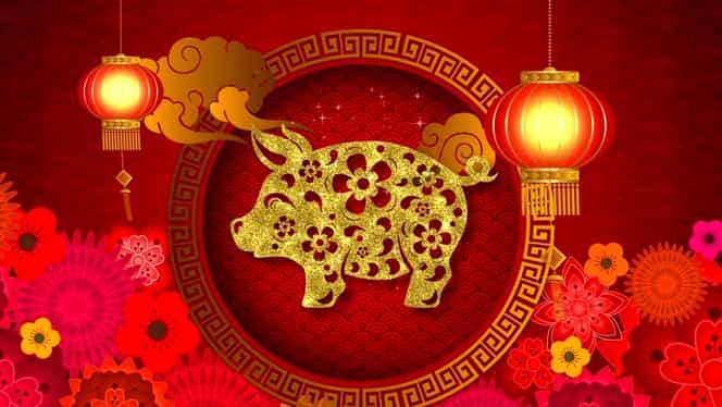 2019, anul Porcului de Pământ în zodiacul chinezesc. Ce înseamnă asta