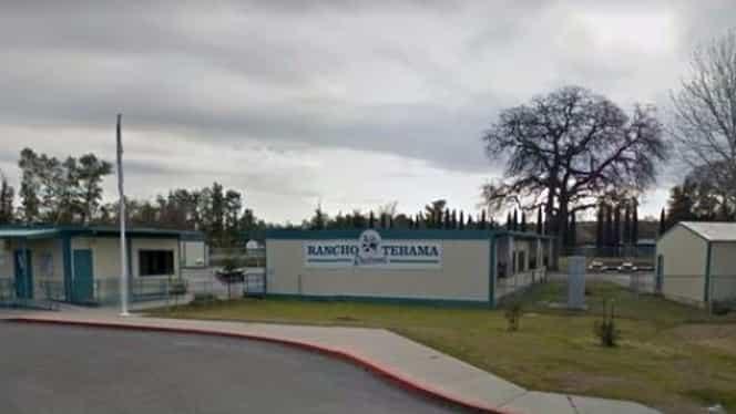 Atac armat într-o şcoală din California! Patru persoane au decedat
