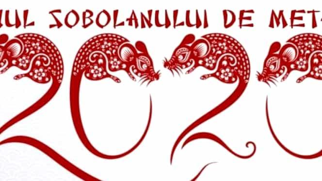 Zodiac Chinezesc pentru weekend-ul 11-12 ianuarie. Maimuțele sunt ocupate, dar își fac timp și pentru cei dragi