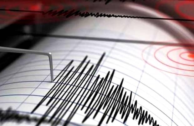 """INFP, prima reacție oficială despre sistemul prin care cutremurele pot fi prevăzute. """"E singurul din Europa"""""""