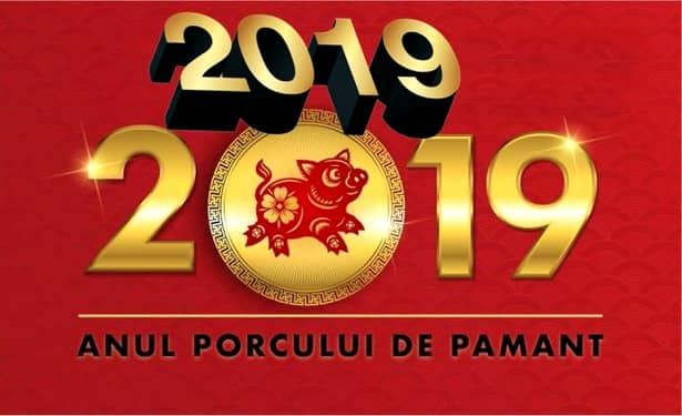 Anul Porcului de Pământ, 2019. Cine va avea mulţi bani, conform Zodiacului Chinezesc