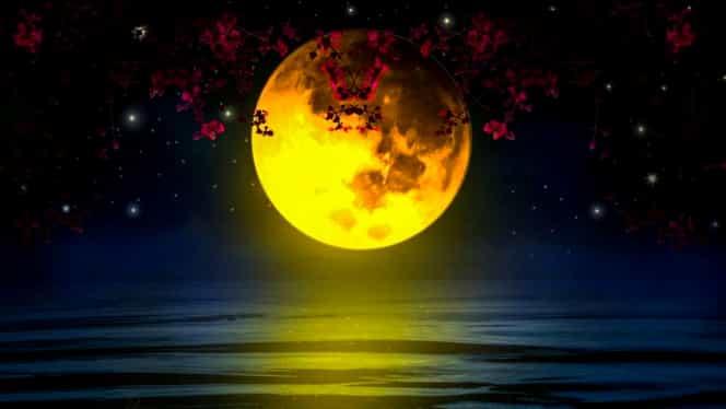 Ce înseamnă Luna Nouă din Săgetător și cum afectează zodiile. Are loc pe 26 noiembrie