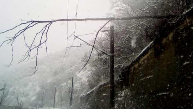 Mersul trenurilor CFR, 17 decembrie: trenuri întârziate și linii blocate