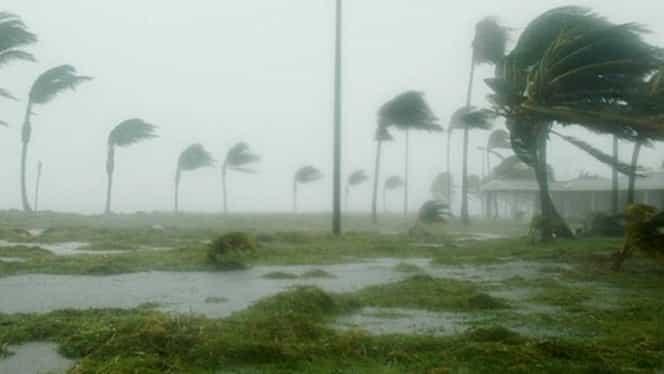 O româncă din Spania se numără printre victimele furtunii Gloria! Femeia dormea într-un parc împreună cu soțul