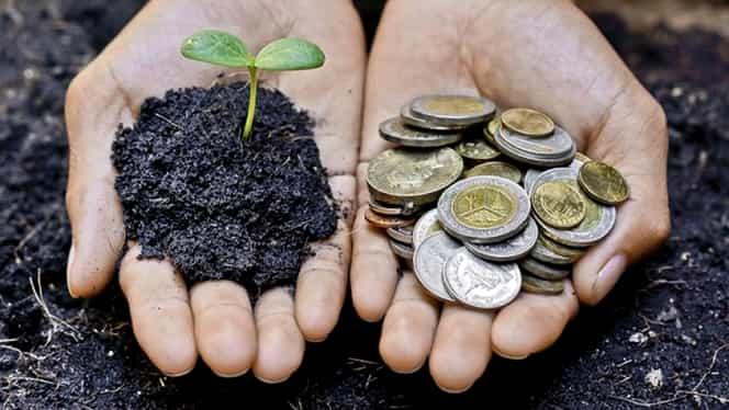Sute de mii de români s-au trezit astăzi cu bani în conturi. Statul a plătit avansul pentru subvențiile pe suprafață