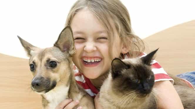 Beneficiile de a avea în casă o pisică sau un câine. Cu ce animal în preajmă crește mai sănătos copilul!