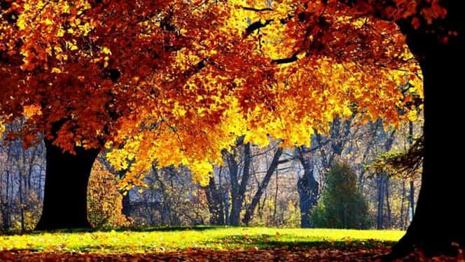 Prognoza meteo 31 octombrie. Vremea va fi rece pentru această dată