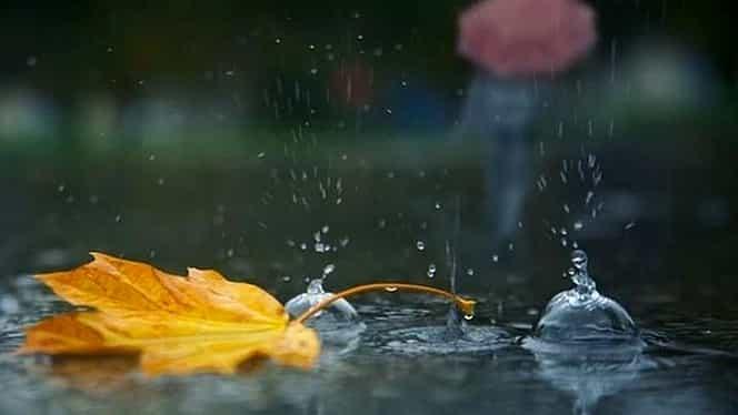 Prognoza meteo 24 octombrie. Vremea va fi mohorâtă. Precipitaţiile vor ajunge şi la 60 de l pe m/p