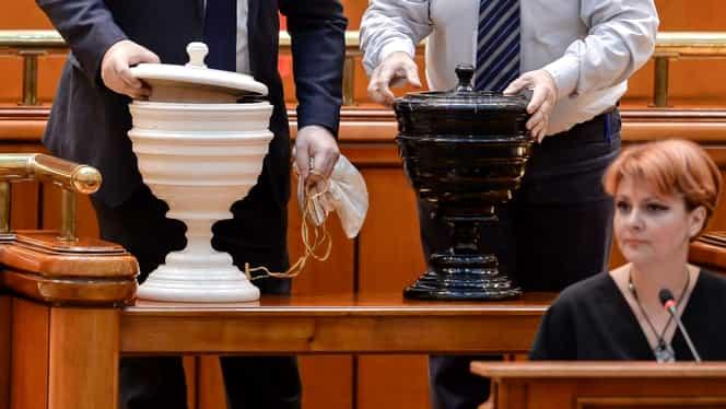 O senatoare PNL a votat împotriva Guvernului Orban