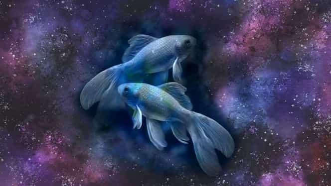 Horoscop zilnic, marți, 27 august 2019. Peștii primesc reproșuri din toate părțile
