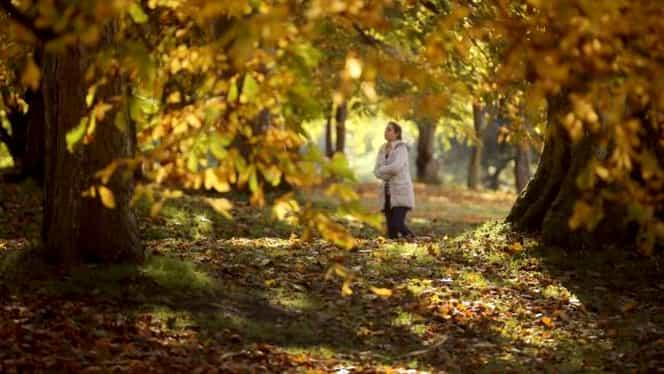 Prognoza meteo miercuri 3 octombrie. Meteorologii anunță un procent înalt de umiditate!