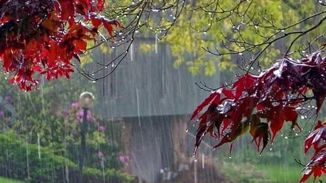 Prognoza meteo 9 noiembrie. Va ploua slab, iar la munte va ninge
