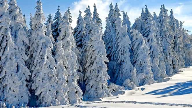 ANM a emis un cod galben de ninsori și viscol în zonele montane și alte 27 de județe. Avertizarea va intra în vigoare vineri, 31 ianuarie