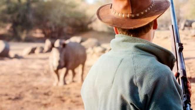 Răzbunarea naturii. Un braconier care vâna rinoceri a fost ucis de un elefant, iar trupul i-a fost devorat de lei