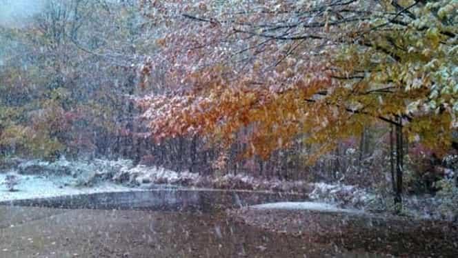 Prognoza meteo joi 15 noiembrie 2018. Vin ninsorile, iar temperaturile scad dramatic!