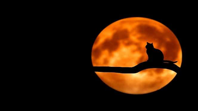 Lună Plină în Scorpion pe 7 mai 2020. Trei zodii primesc lovituri grele de la viață