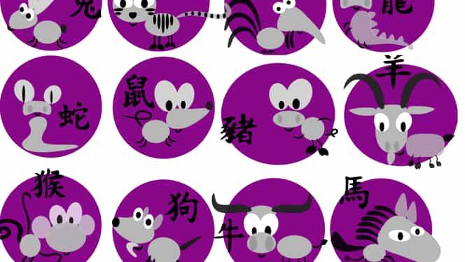 Zodiac chinezesc pentru marți, 18 februarie 2020. Șobolanii atrag simpatia celor din jur
