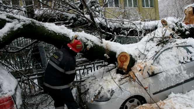 Despăgubiri auto 2019: Cui trebuie să te adresezi, dacă găsești mașina avariată în parcare