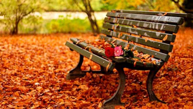 Prognoza meteo 3 noiembrie. Vremea se încălzeşte uşor