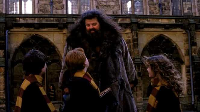 Actorul Robbie Coltrane din Harry Potter a rămas imobilizat în scaunul cu rotile. Se luptă cu dureri incredibile